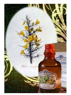 Ajonc Fragrifert Parfumeur para Hombres y Mujeres