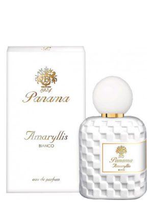 Amaryllis Bianco Panama 1924 para Mujeres