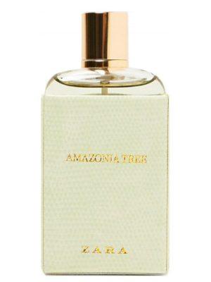 Amazonia Tree Zara para Mujeres
