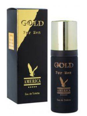 America Gold For Men Milton Lloyd para Hombres