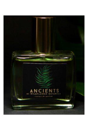 Ancients Hi Wildflower Botanica para Hombres y Mujeres