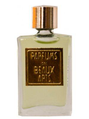 Bancha DSH Perfumes para Hombres y Mujeres