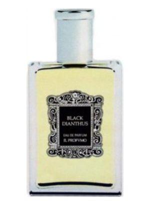 Black Dianthus Il Profvmo para Hombres y Mujeres
