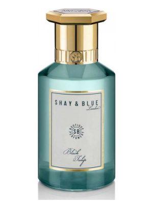 Black Tulip Shay & Blue London para Hombres y Mujeres