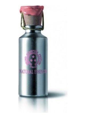 Blu Perfume Oil Bruno Acampora para Mujeres