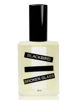 Broken Glass Blackbird para Hombres y Mujeres