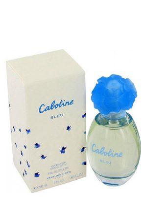 Cabotine Bleu Gres para Mujeres