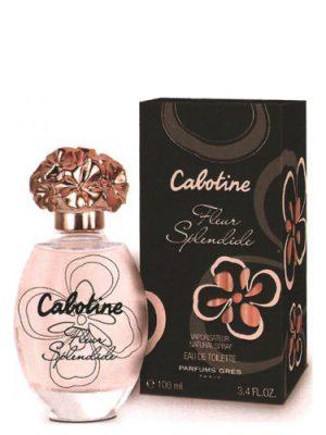Cabotine Fleur Splendide Gres para Mujeres