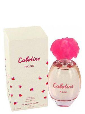 Cabotine Rose Gres para Mujeres