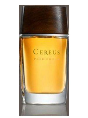 Cereus No.11 Cereus para Hombres