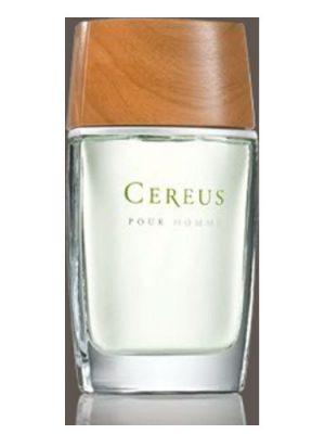 Cereus No.5 Cereus para Hombres