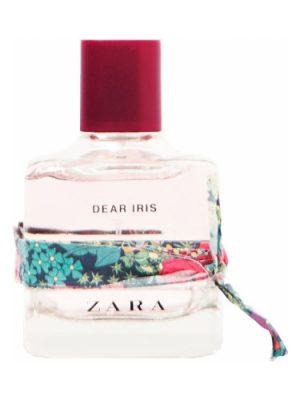Dear Iris Zara para Mujeres