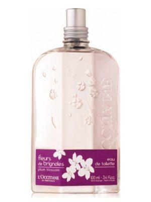 Fleurs de Brignoles (Plum Blossom) L'Occitane en Provence para Mujeres