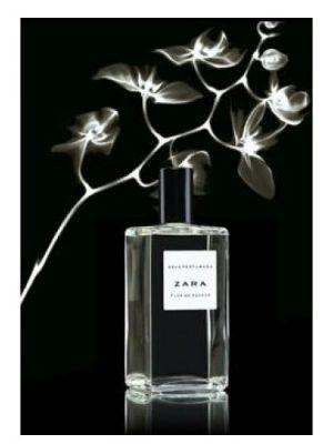 Flor de Azahar Zara para Mujeres
