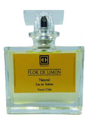 Flor de Limon Terragonia para Hombres y Mujeres