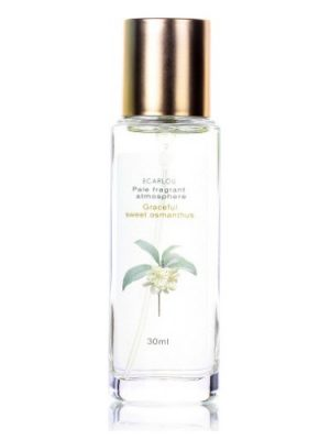 Graceful Sweet Osmanthus 优雅金桂 Ecarlou 露嘉伊 para Hombres y Mujeres