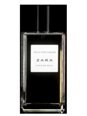 Lirio de Agua Zara para Mujeres