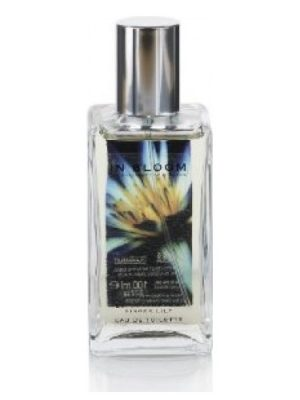 Lotus Flower and Ginger Lily Marks and Spencer para Mujeres