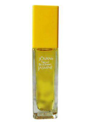 Night Blooming Jasmine Jovan para Mujeres