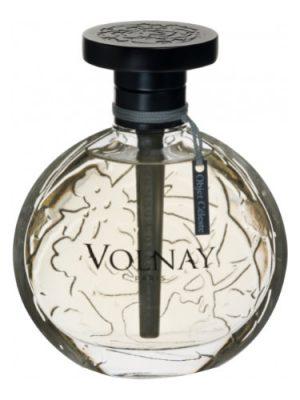 Object Celeste Volnay para Mujeres