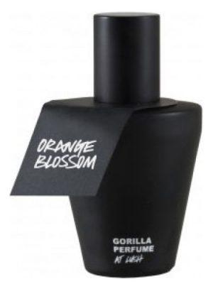 Orange Blossom Lush para Hombres y Mujeres