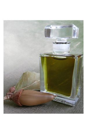 Q Roxana Illuminated Perfume para Hombres y Mujeres