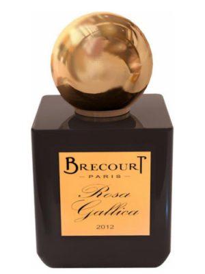 Rosa Gallica Brecourt para Hombres y Mujeres