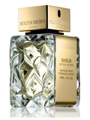 Shisur Molton Brown para Hombres y Mujeres