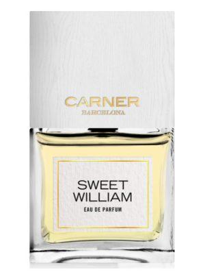 Sweet William Carner Barcelona para Hombres y Mujeres