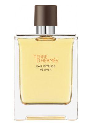 Terre D'Hermes Eau Intense Vetiver Hermès para Hombres