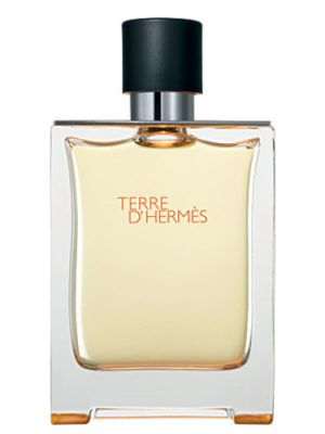 Terre d'Hermes Hermès para Hombres