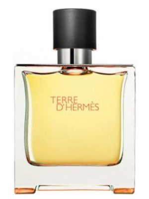 Terre d'Hermes Parfum Hermès para Hombres