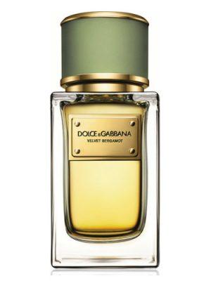 Velvet Bergamot Dolce&Gabbana para Hombres