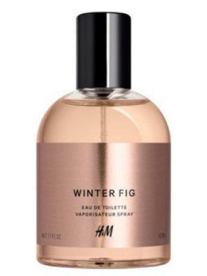 Winter Fig HM para Hombres y Mujeres