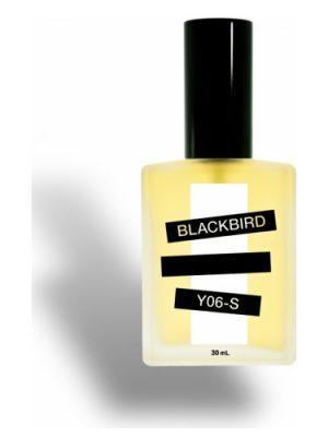 Y06-S Blackbird para Hombres y Mujeres