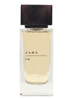 Zara Fig Zara para Hombres