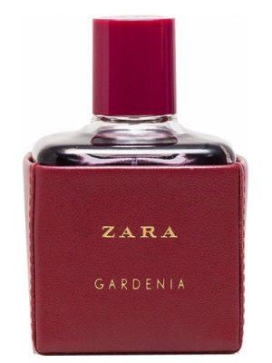 Zara Gardenia 2016 Zara para Mujeres