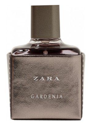 Zara Gardenia 2017 Zara para Mujeres