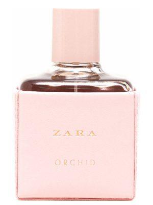 Zara Orchid 2016 Zara para Mujeres