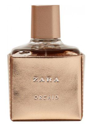 Zara Orchid 2017 Zara para Mujeres